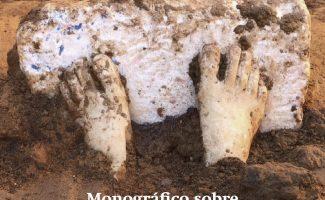 Edición monográfica de El Carro dedicada al proyecto Tarteso en Comunidad y al yacimiento Casas del Turuñuelo